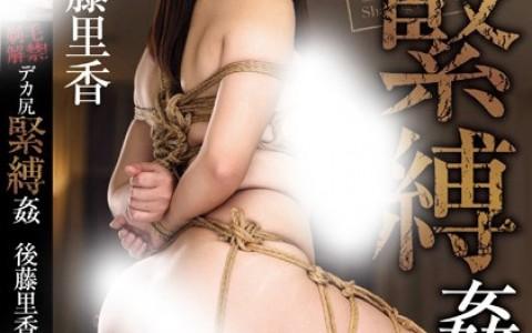 VICD-373:后藤里香(後藤里香)口碑不错作品封面资料详情(特辑971期)
