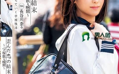 XVSR-239:长谷川奈奈(長谷川奈々)口碑不错作品封面资料详情(特辑146期)
